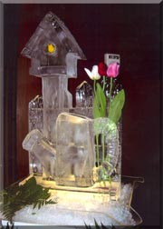Bird House & Watering Can